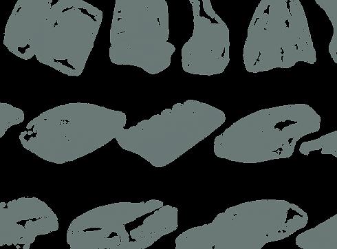 sidebyside-meat-overlay.png