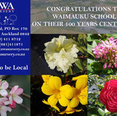 Waimauku-School-Centenary-100-yrs-advert