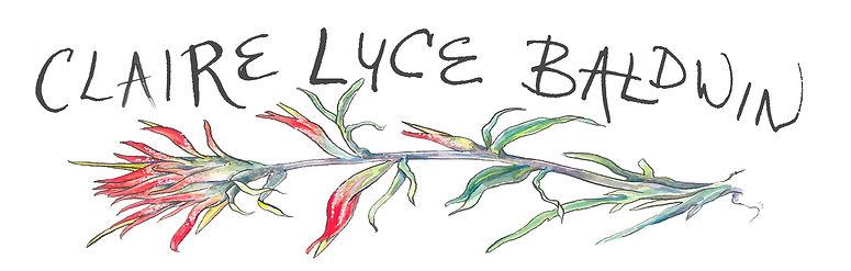 Claire Luce Baldwin Illustration