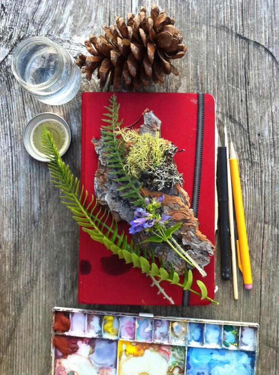 Stehekin Sketchbook
