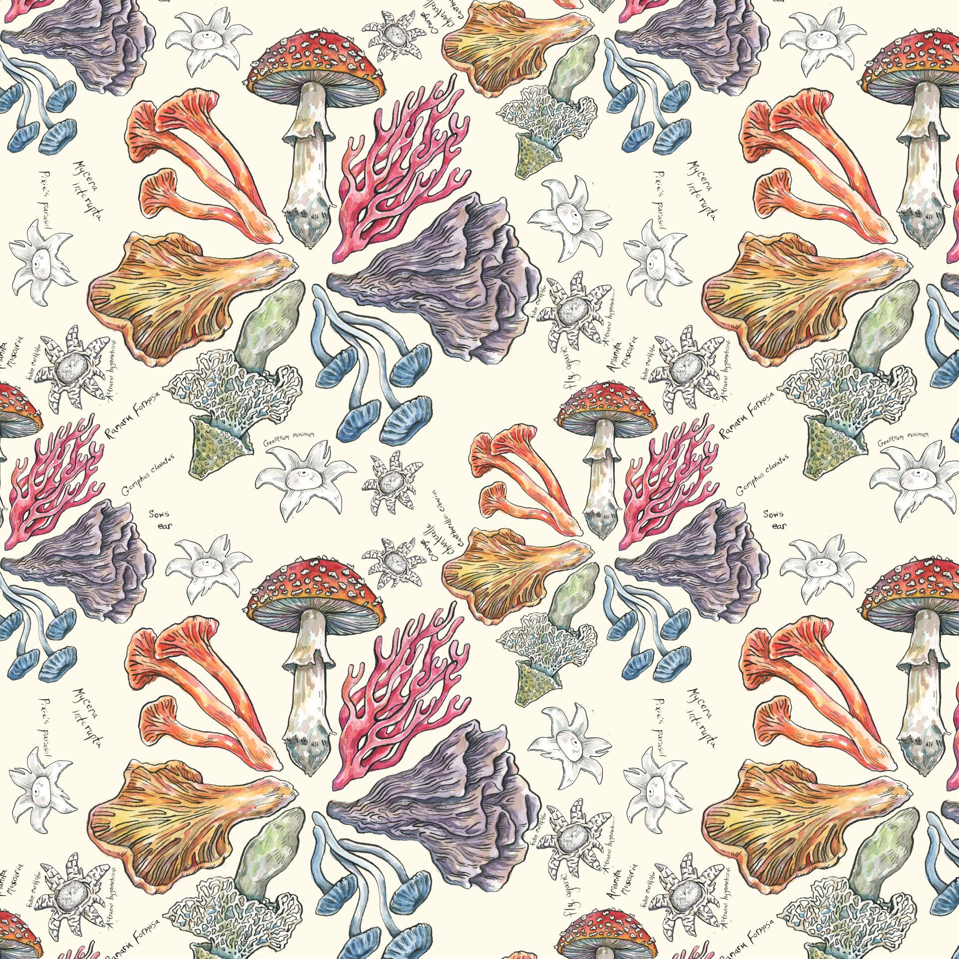 mushroom color wheel society6.jpg