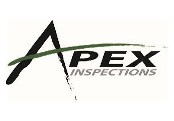Apex3x2.png