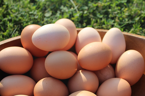 Farm Fresh Eggs (18)