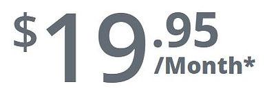 19.95 INTERNET SERVICE VANCOUVER.JPG