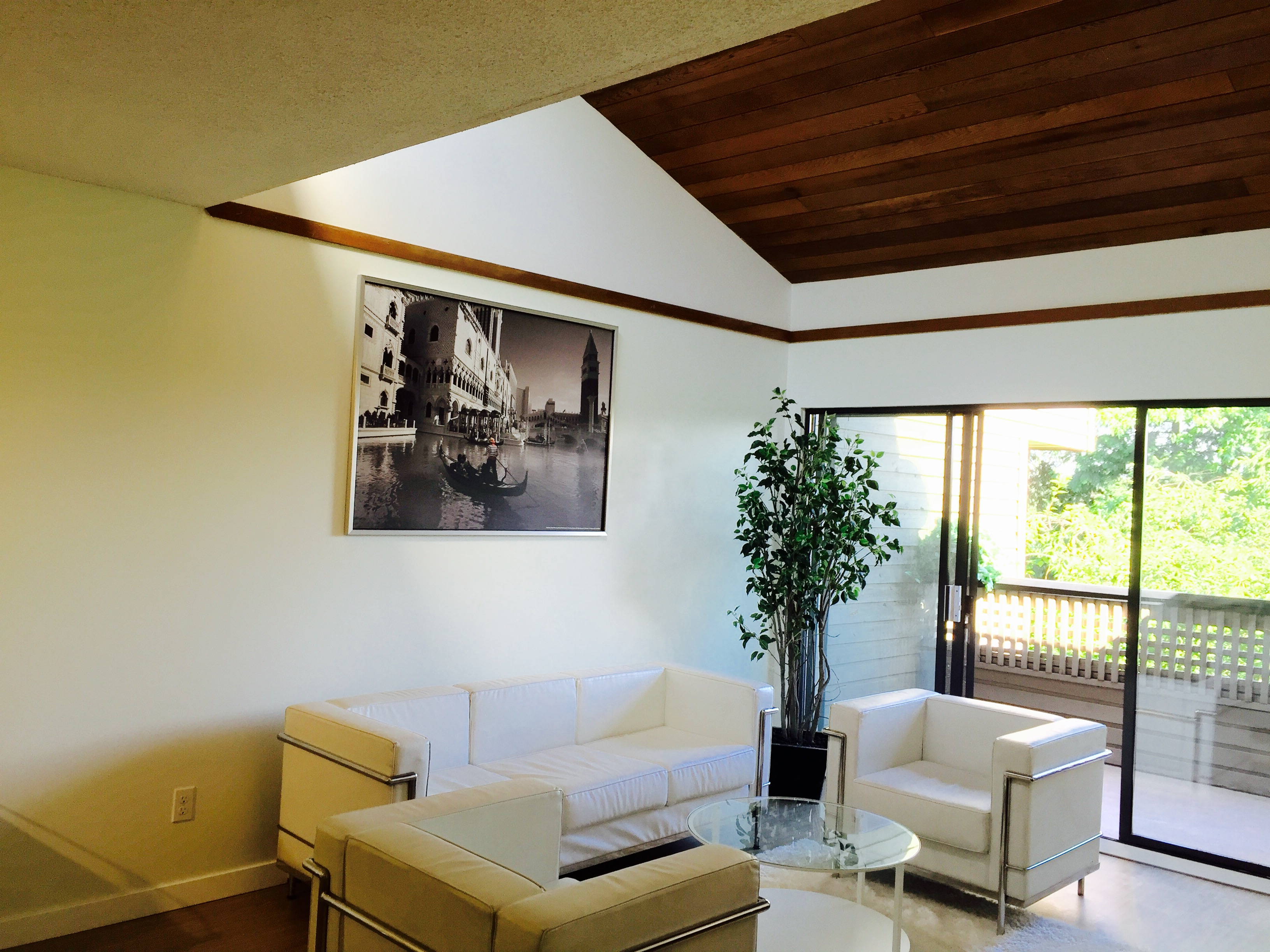 Living Room and Vaulted Ceiling