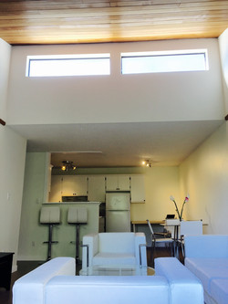 Vaulted Ceiling and Skylight Windows