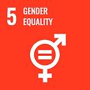 The official global goals 5 logo for Gender Equality