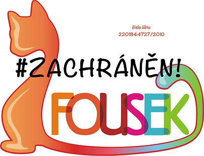 FOUSEK2-5.jpg