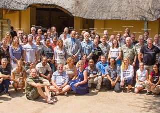 Lion (and Leopard) Workshops - Kasane, Lusaka, Maputo and Dar es Salaam