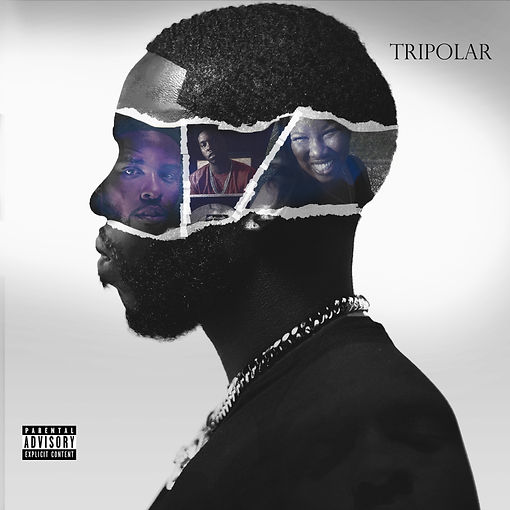 tripolar chose copy.jpg