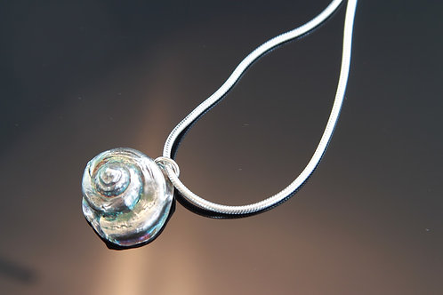 Moon Shell Necklace 24""