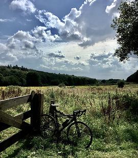 fietsen bij Nijmegen VegaVelo.jpeg