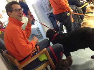 Pet Therapy: presso l'Albergo del Nonno la dimostrazione finale di un progetto durato sei mesi