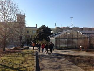 L'Istituto Agrario Gregorio Mendel di Villa Cortese potrà usare la struttura dell'ex scuola Mede
