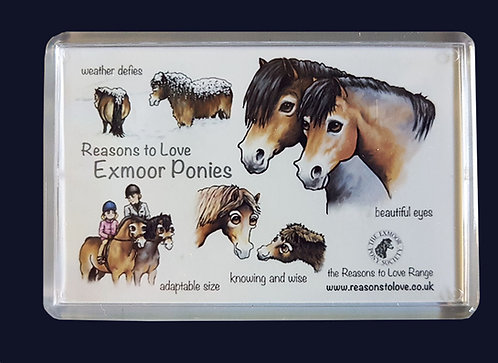 Reasons to Love Exmoor Ponies Fridge Magnet