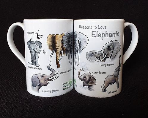 Reasons to Love Elephants
