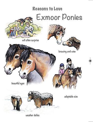 Reasons to Love Exmoor Ponies Greetings card