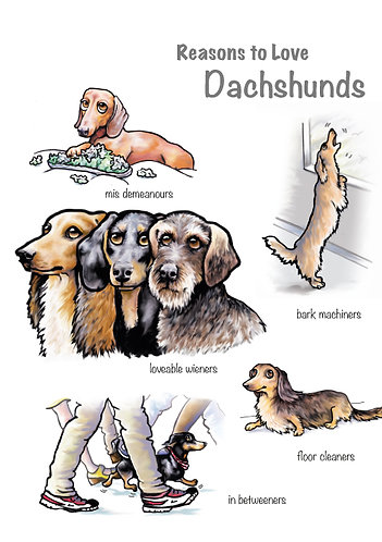 Reasons to Love Dachshunds Greetings Card