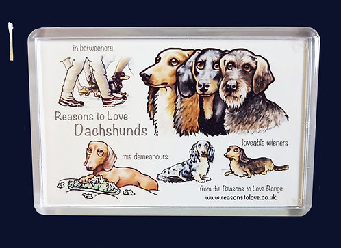 Reasons to Love Dachshunds Fridge Magnet