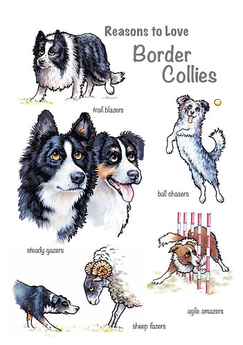 Reasons to Love Border Collies Greetings Card