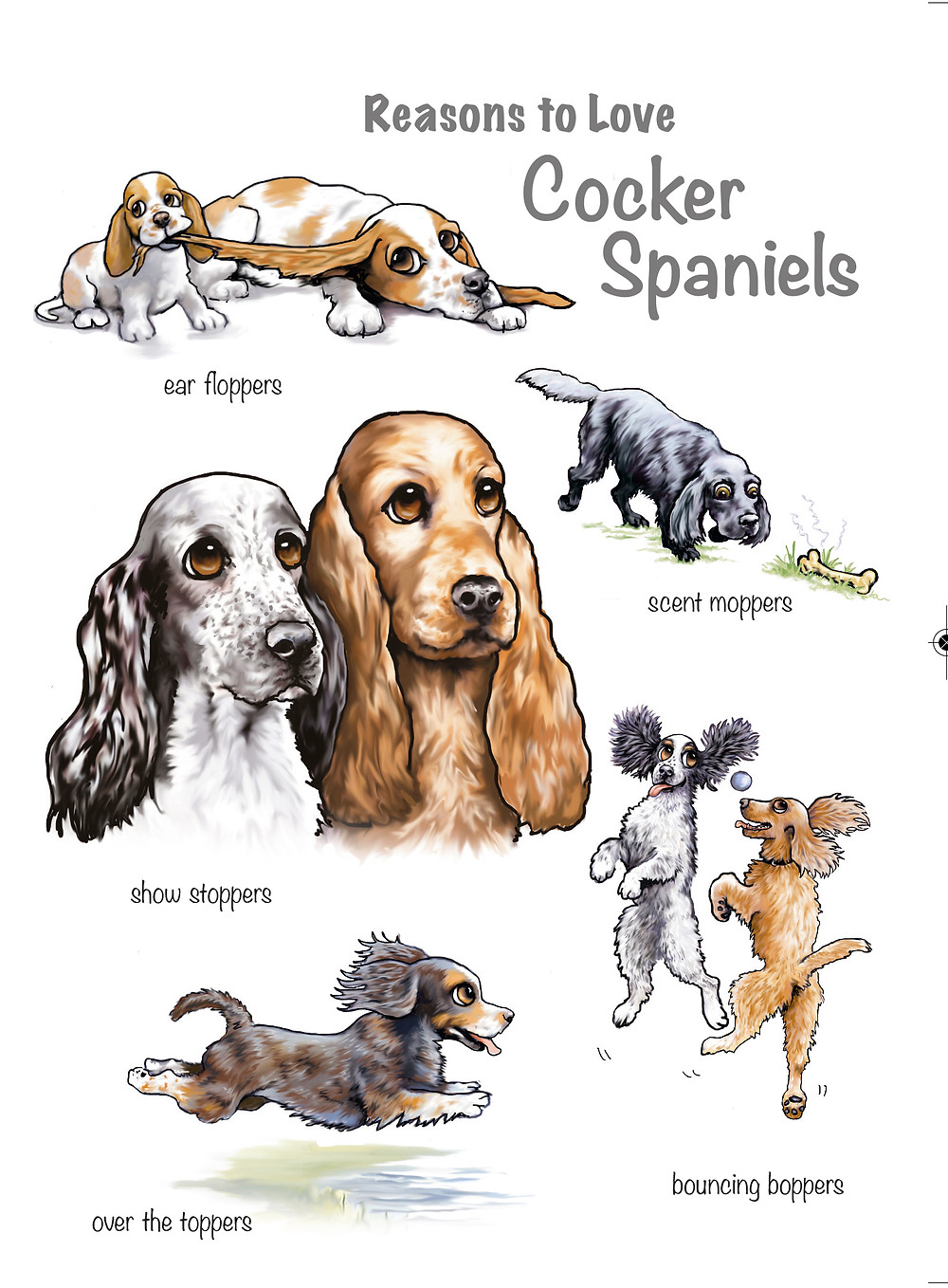 Reasons to Love Cocker Spaniels