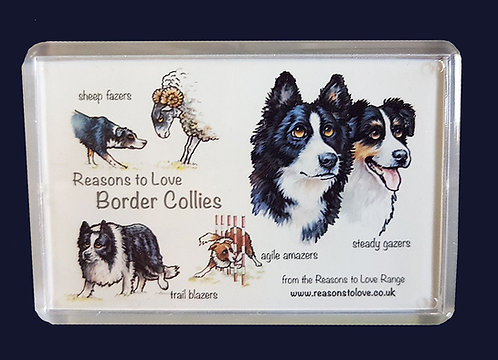 Reasons to Love Border Collies Fridge Magnet