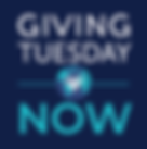 givtuesnow_logo_stacked-Blue-FINALweb.pn