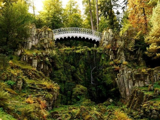 Fairy tales of the Black Forest