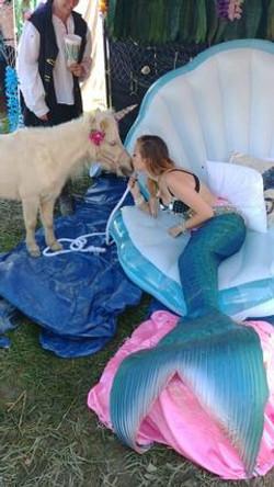 ACA A Characteristic Attitude Mermaids