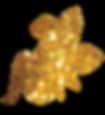 goldfairyflip.png