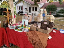 Three Furies Alpaca Farm