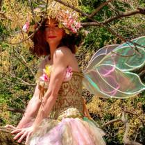 Salea The Fairy