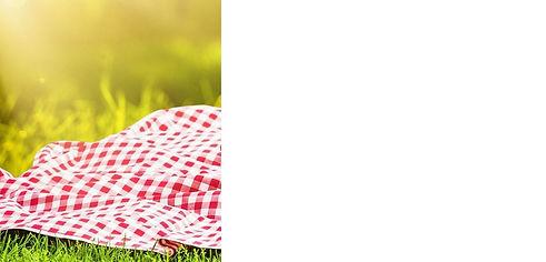 summer dinner picnic.jpg