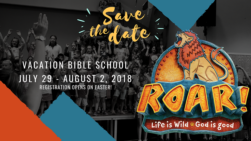 VBS 2019 save the date FB.png