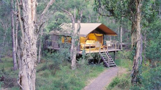 sustainabel tree house