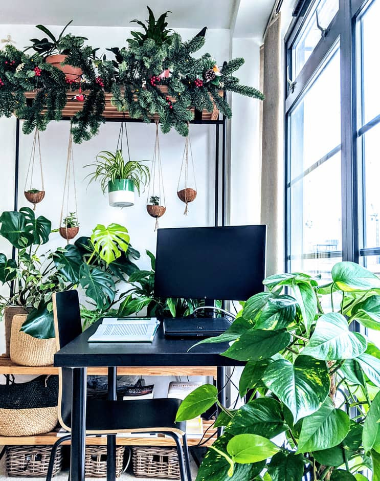 An easy way to incorporate plants into your home as a room divider.