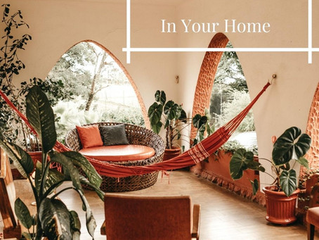 What is Biophilic Interior Design and How To Incorporate Into Your Home
