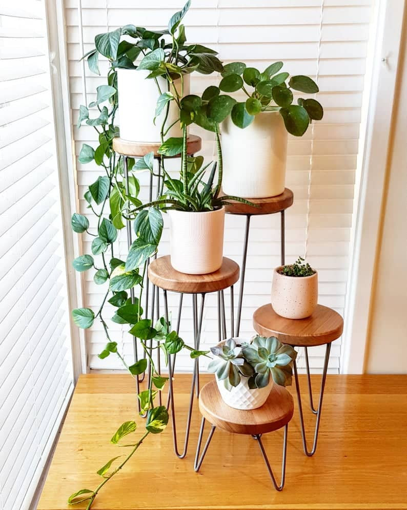 plant stands in different sizes, with round wooden top and metal legs. Click on the image to shop the plant stand from the Etsy maker