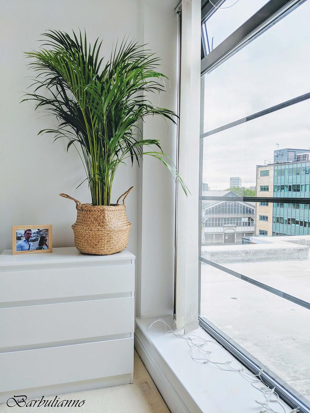 Big bedroom window design