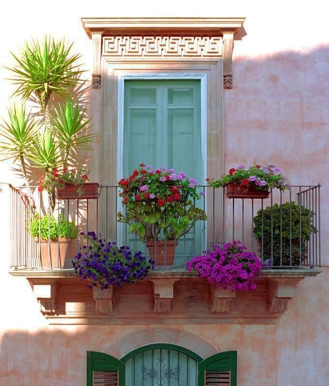 Juliette balcony filled with colourful flowers