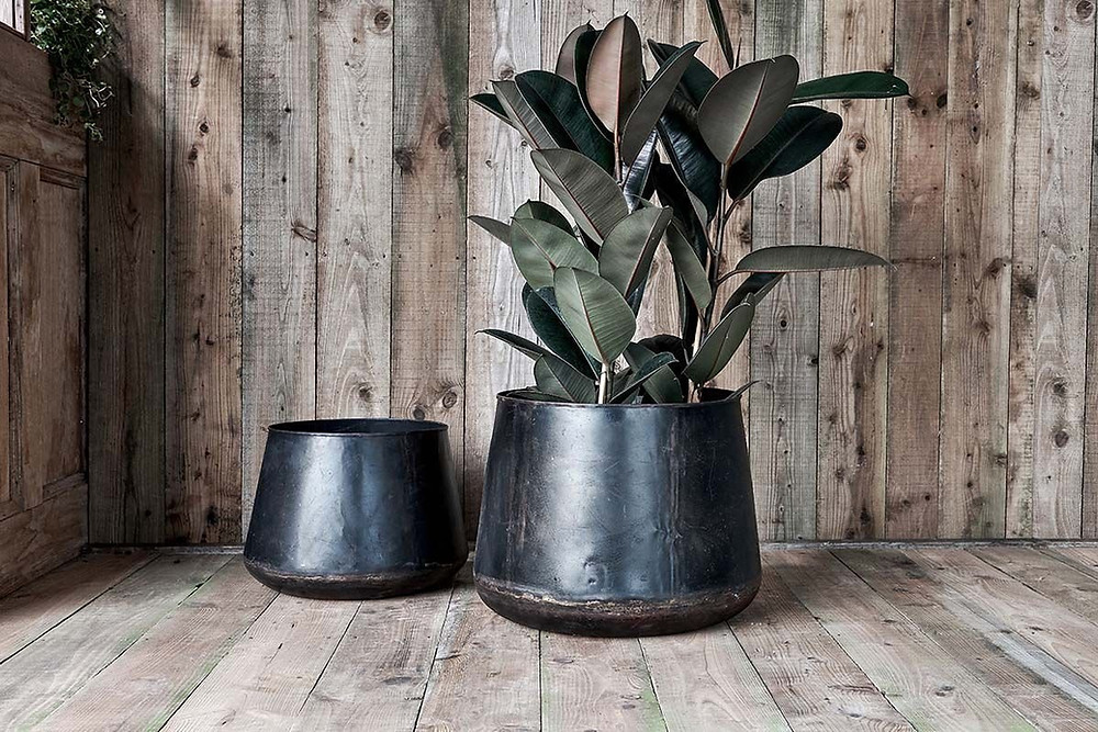 Reclaimed Iron planter gathered from old storage drums.