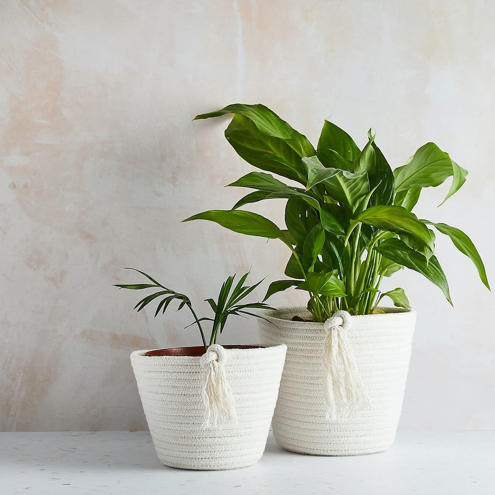 recycled cotton house plant pot