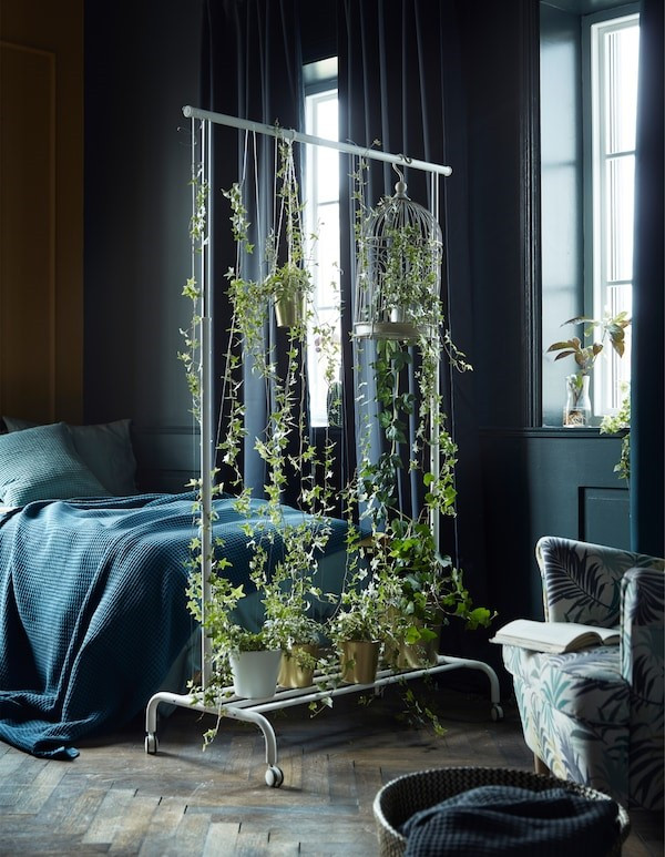Coat rail with hanging plants as a room divider