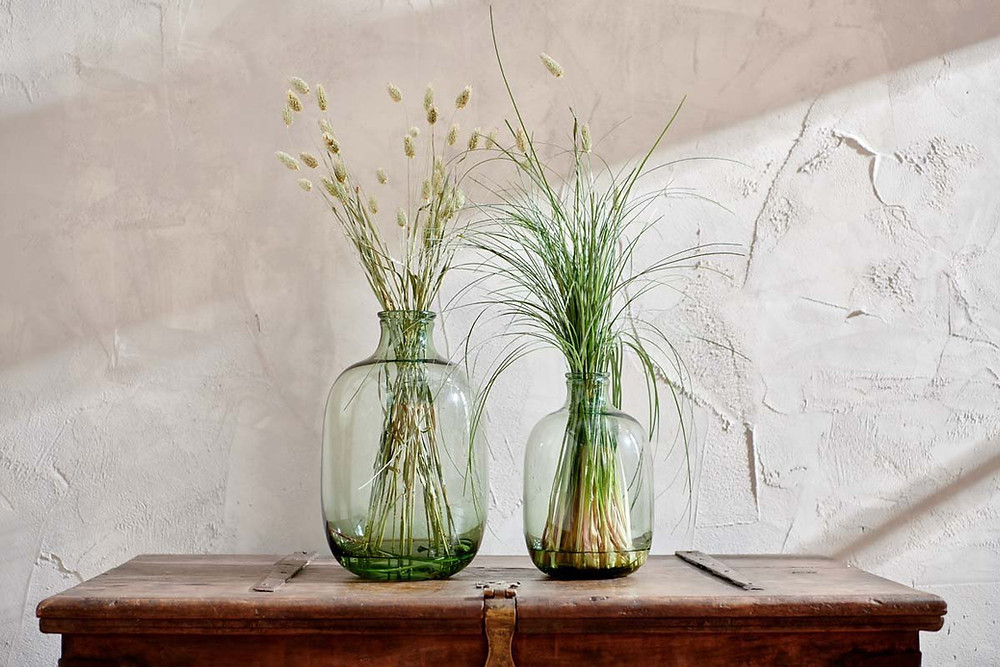 Glass vase for bathroom plants without natural light.