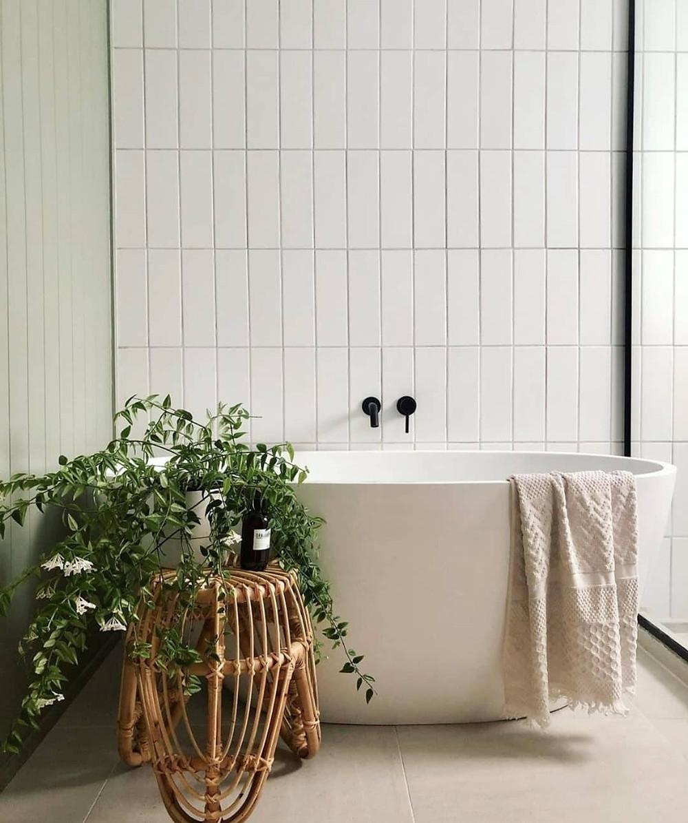 Plants in spa bathroom