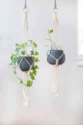 outdoor plant hanger.jpg