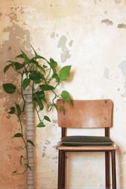 Sustainable dining Set Cushions