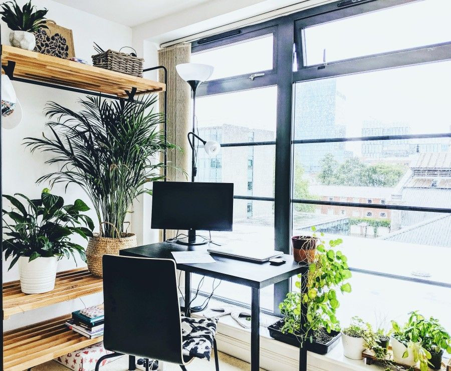 home office decor with plants idea