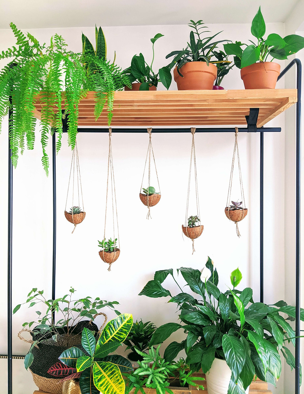 Incorporate plants into your home via open shelving.
