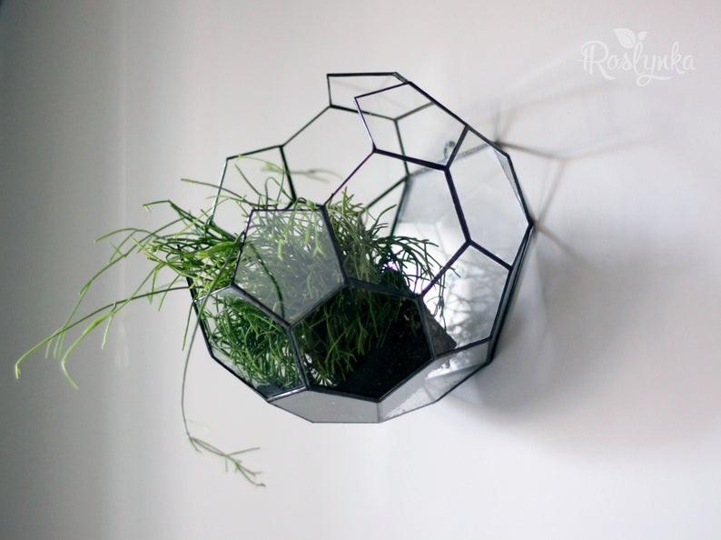 geometric wall hanging succulents